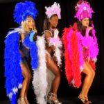 Concepts de soirées clubbing artites performeurs cirque france troupe de danse brésilienne seducao brasil