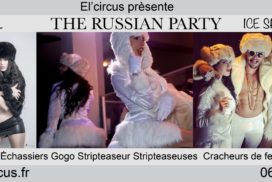 concepts soirées clubbing artistes performeurs ice shoots club gogos chippendales mascottes